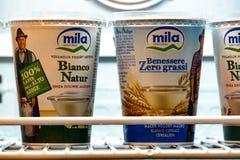 Yogurt di Mila immagine stock