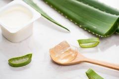 Yogurt di vera dell'aloe con le foglie fresche su una tavola di legno Fotografia Stock Libera da Diritti