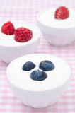 Yogurt with different fresh berries in bowls. Yogurt with different berries in bowls (with strawberries, blueberries, raspberries) close-up Royalty Free Stock Photos