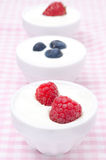 Yogurt with different fresh berries in bowls. Yogurt with different berries in bowls (with strawberries, blueberries, raspberries) close-up, vertical Royalty Free Stock Photography