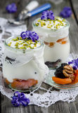 Yogurt with dried fruit Royalty Free Stock Image