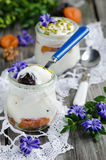 Yogurt with dried fruit Stock Images