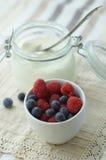 Yogurt e bagas frescas Fotos de Stock