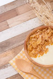 Yogurt e fiocco di cereali con la prima colazione Fotografie Stock Libere da Diritti