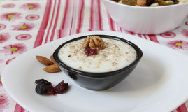 Yogurt e noci Fotografie Stock Libere da Diritti