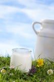 Yogurt e una brocca di latte Fotografia Stock Libera da Diritti