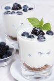 Yogurt em um vidro Imagens de Stock Royalty Free