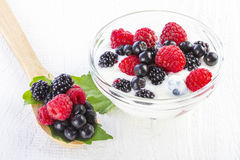 Yogurt with forest berries in bowl Royalty Free Stock Photography