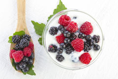 Yogurt with forest berries in a bowl Stock Photos