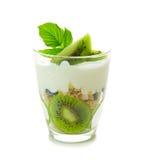 Yogurt fresco con il kiwi isolato Fotografia Stock