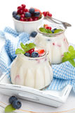 Yogurt fresco con le bacche Fotografie Stock
