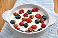 Yogurt with fresh berries Stock Photography