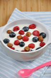 Yogurt with fresh berries Royalty Free Stock Photography
