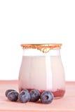 Yogurt and fresh blueberries Stock Images