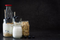 Yogurt with fresh blueberries and cereals Stock Photos