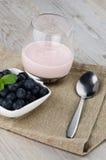 Yogurt with fresh blueberries Stock Photo