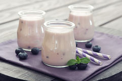 Yogurt with  fresh blueberry Royalty Free Stock Image