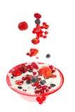Yogurt with fresh fruit Stock Image
