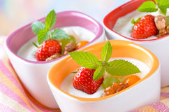 Yogurt with fresh fruit Stock Photos