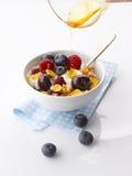 Yogurt with fresh Fruit and Granola Stock Photos