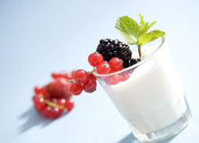 Yogurt and fruit. Glass of yogurt with redcurrant and blackberries royalty free stock photography
