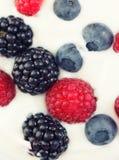 Yogurt and fruit. Fresh Yogurt and berry fruit Royalty Free Stock Image