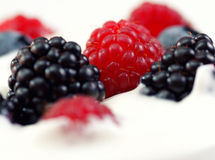 Yogurt and fruit. Fresh Yogurt and berry fruit Royalty Free Stock Photo