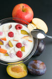 Yogurt with fruits. Glass bowl filled with yogurt mixed with fruit pieces arranged with spoon and some fruits around close-up  isolated on black background Stock Images