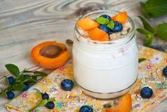 Yogurt with fruits. Stock Image