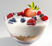 Yogurt granola. Yogurt and granola with berries Stock Photo
