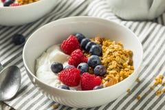 Yogurt greco organico sano con Granola e le bacche Fotografia Stock