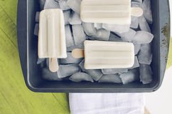Vanilla popsicles on ice Stock Photography