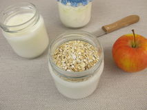 Yogurt in jars with rolled oats Stock Photography