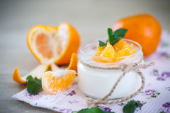Yogurt with mandarin oranges Stock Image