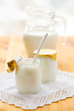 Yogurt and milk Royalty Free Stock Photos
