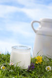 Yogurt and a milk jug Royalty Free Stock Photo