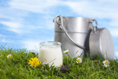 Yogurt and milk jug Royalty Free Stock Image