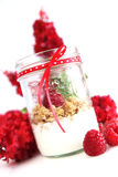 Yogurt and muesli. Clear bowl with raspberry, muesli and yogurt on a white background Royalty Free Stock Photography