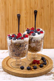 Yogurt, muesli and berries of blueberry, bog bilberry and stone Royalty Free Stock Images