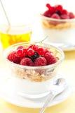 Yogurt ,muesli ,berries and honey Stock Images
