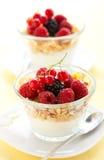 Yogurt ,muesli ,berries and honey Stock Image