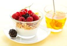Yogurt ,muesli ,berries and honey Royalty Free Stock Photos