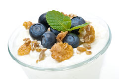 Yogurt with muesli and fresh blueberries in a glass, close-up Stock Photography