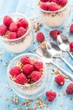 Yogurt with muesli and fresh raspberries. Breakfast with muesli, yogurt and fresh raspberries Royalty Free Stock Photo