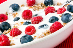 Yogurt muesli and fruit. Stock Photography