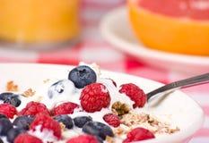 Yogurt muesli and fruit breakfast. Royalty Free Stock Photos