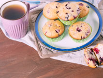 Yogurt muffins with berries Stock Photos