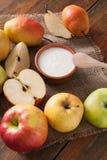 Yogurt naturale casalingo dell'agricoltore per la prima colazione Immagini Stock Libere da Diritti