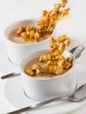 Yogurt and nuts dessert Stock Photos