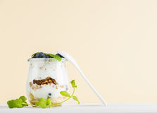 Yogurt oat granola with jam, blueberries and green leaves in glass jar on pastel yellow backdrop Stock Images